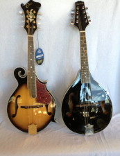 Mandolins for Sale