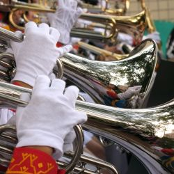Woodwind and Brass Instrument Rentals