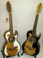 Bajo Sexto and Bajo Quinto Guitars
